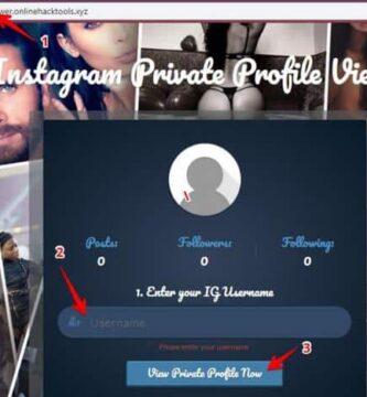 Cómo ver perfiles privados de Instagram de forma anónima